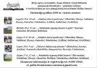 Vasarą kviečiame vykti į literatūrines keliones Biržų rajone