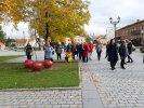 Bibliotekininkai lankėsi Joniškio krašte